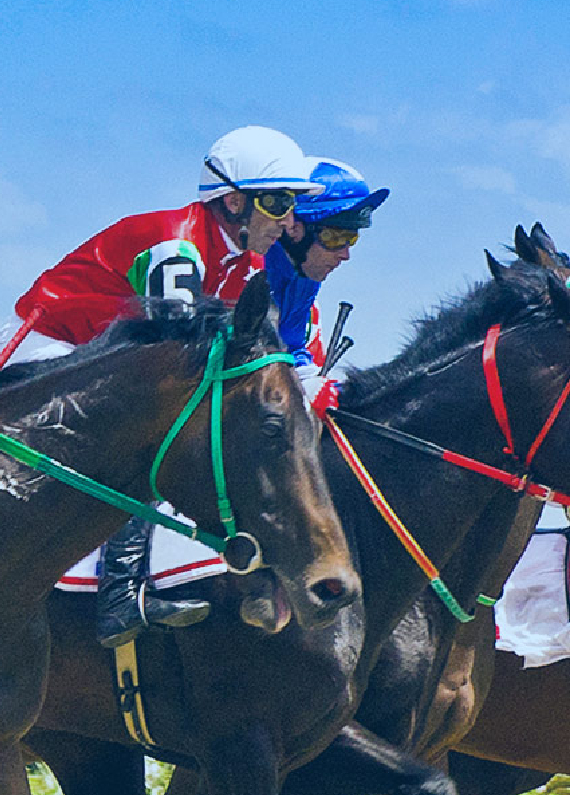 triple crown and horse racing betting